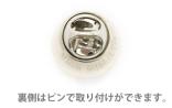 P5-Pin-2
